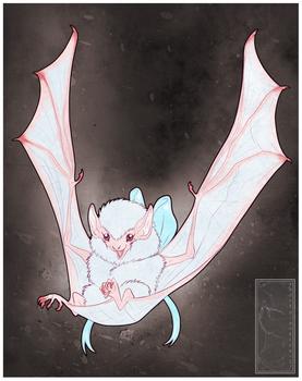 Little White Batbat