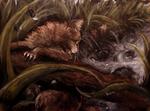 Stormkit's Slip by kuiwi