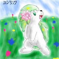 Shaymin by yoshitaka
