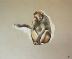 D'or, grand macaque, 2019, Anne BAIL-DECAEN