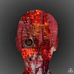 Die Mensch-Maschine II