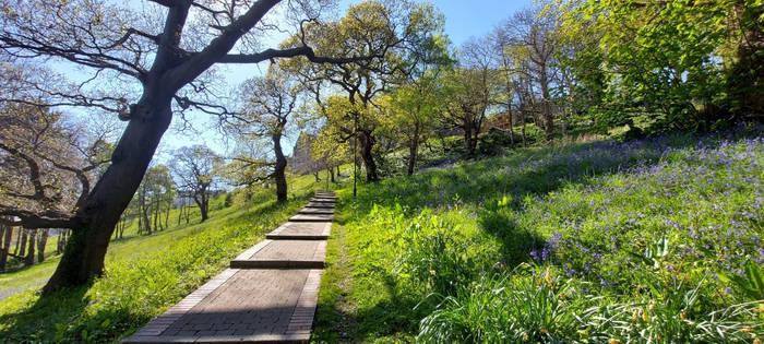 Path to Utopia