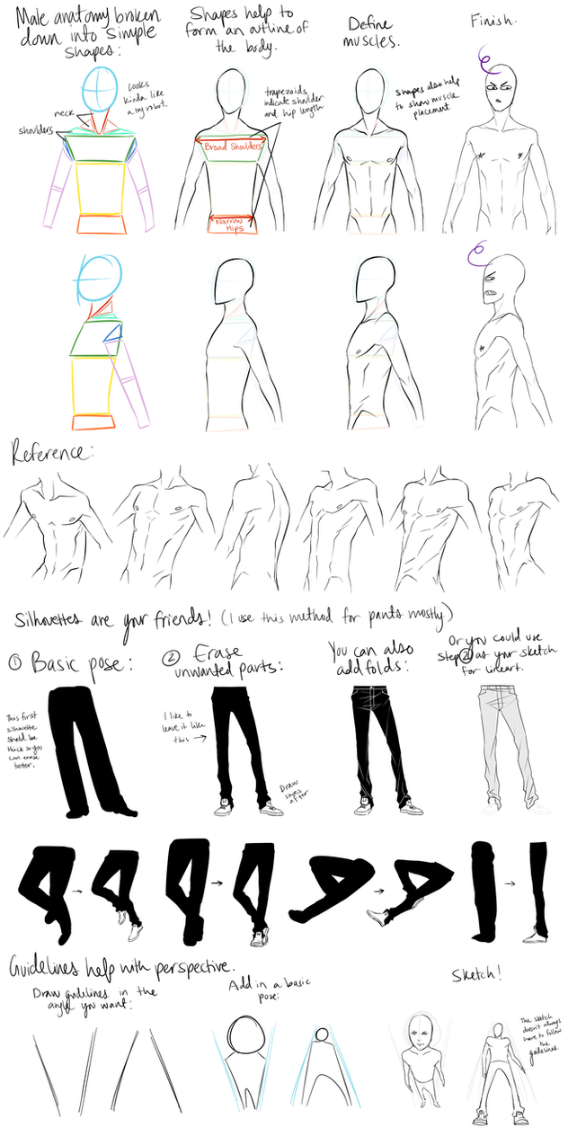Male Anatomy Reference and Perspective Tips by DeviantTear
