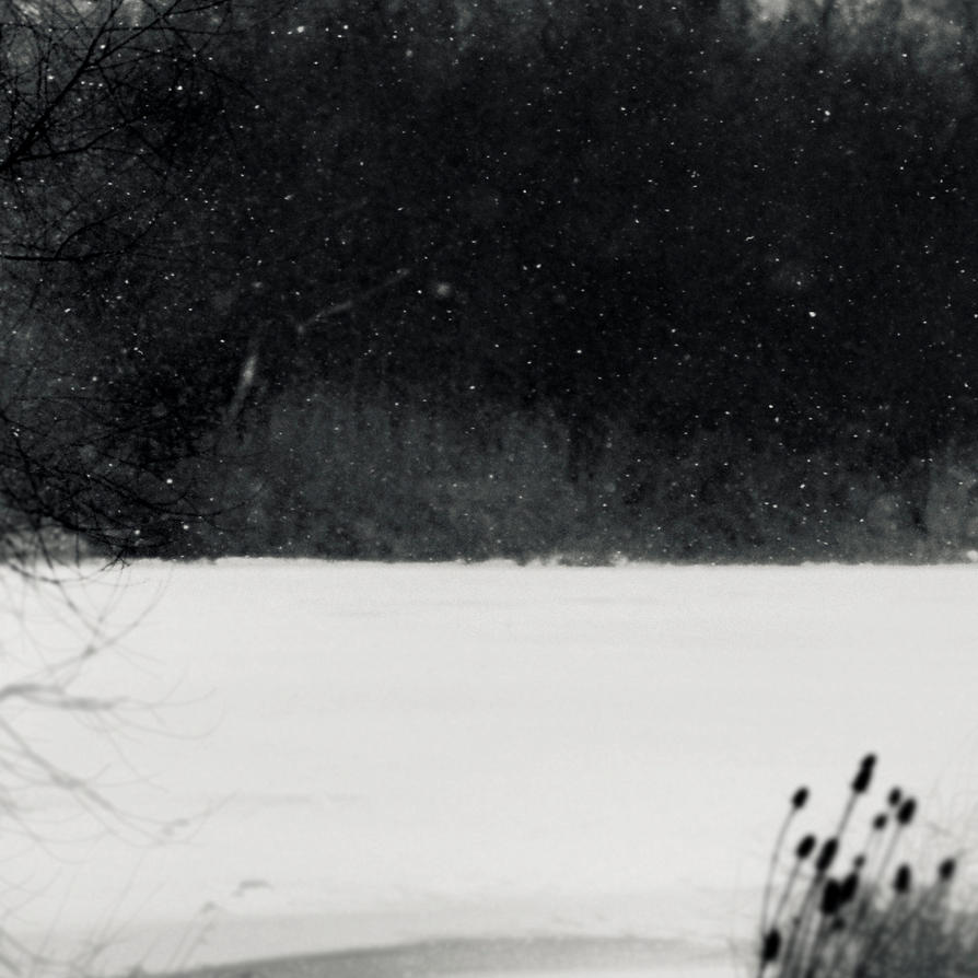 winter way in the delta III by carrex
