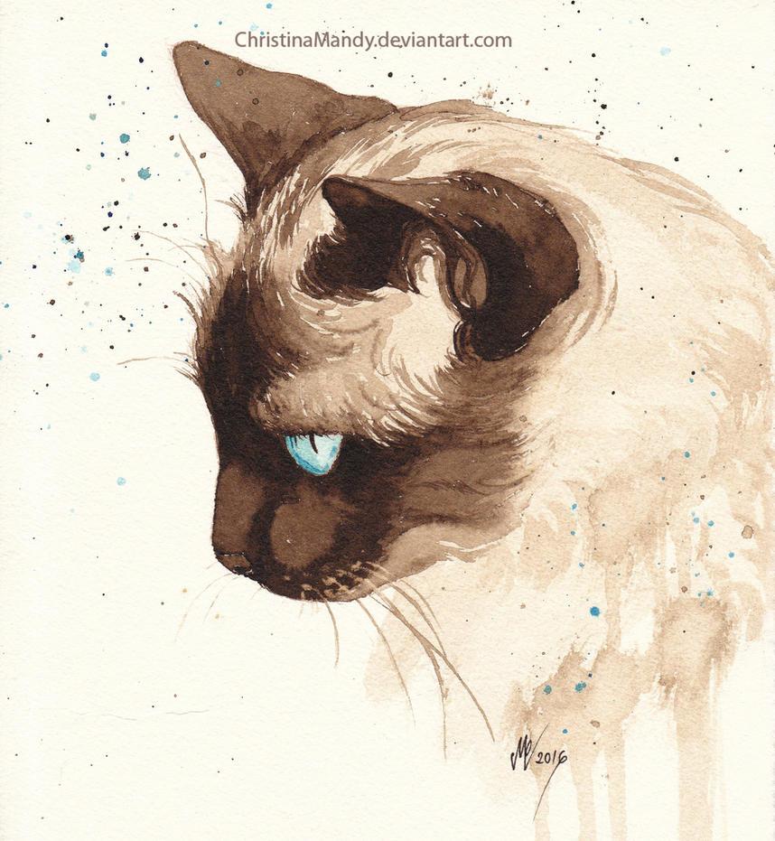 Behind blue eyes by ChristinaMandy