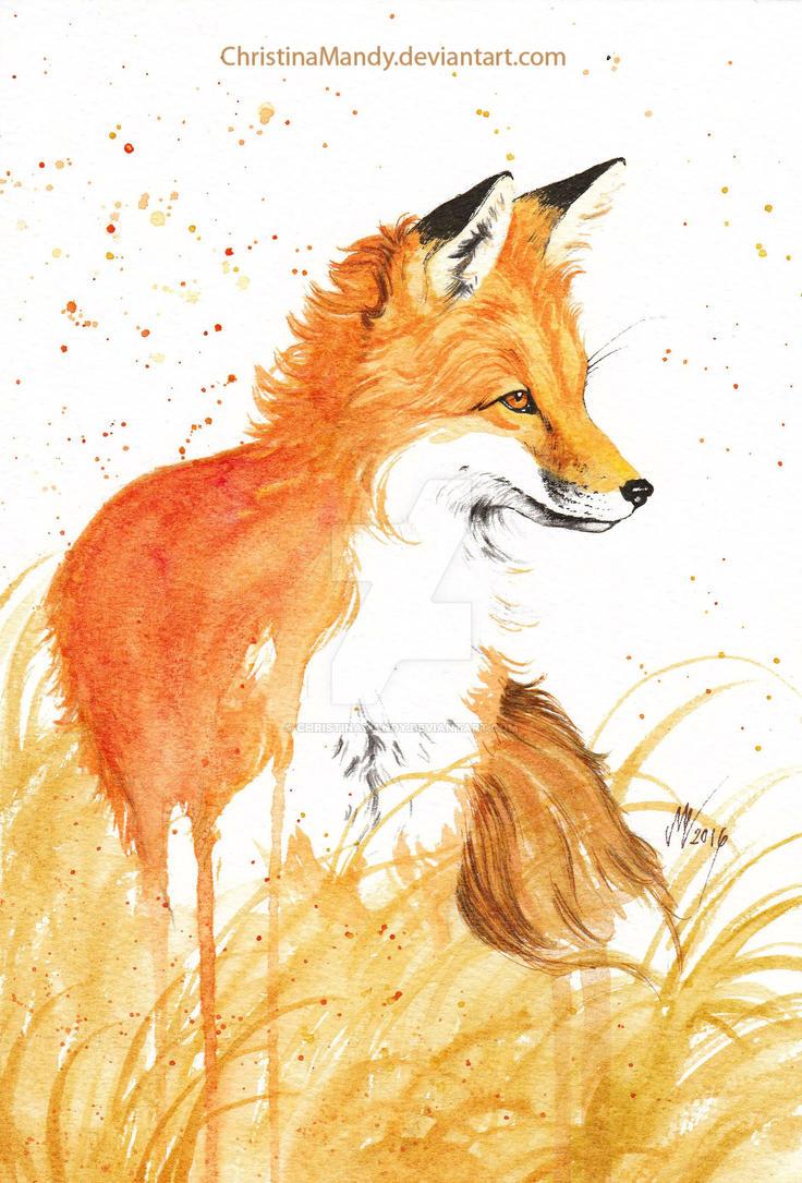 Autumn fox II by ChristinaMandy