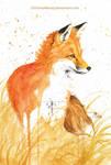 Autumn fox II