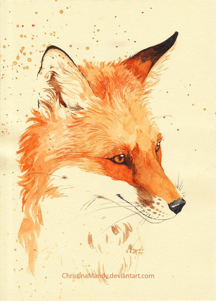 wolf minori marytson deviantart
