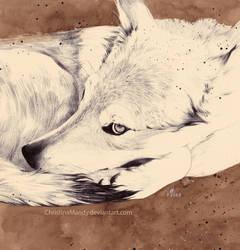 Wolf heart by ChristinaMandy