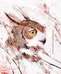 Owl by ChristinaMandy