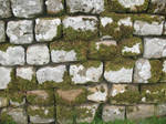 Stone Wall texture 9