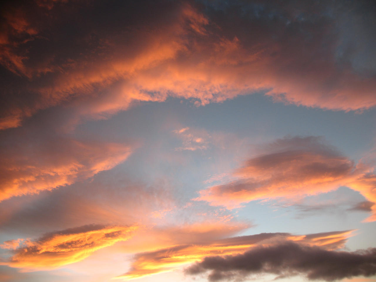 Autumn sky stock 31