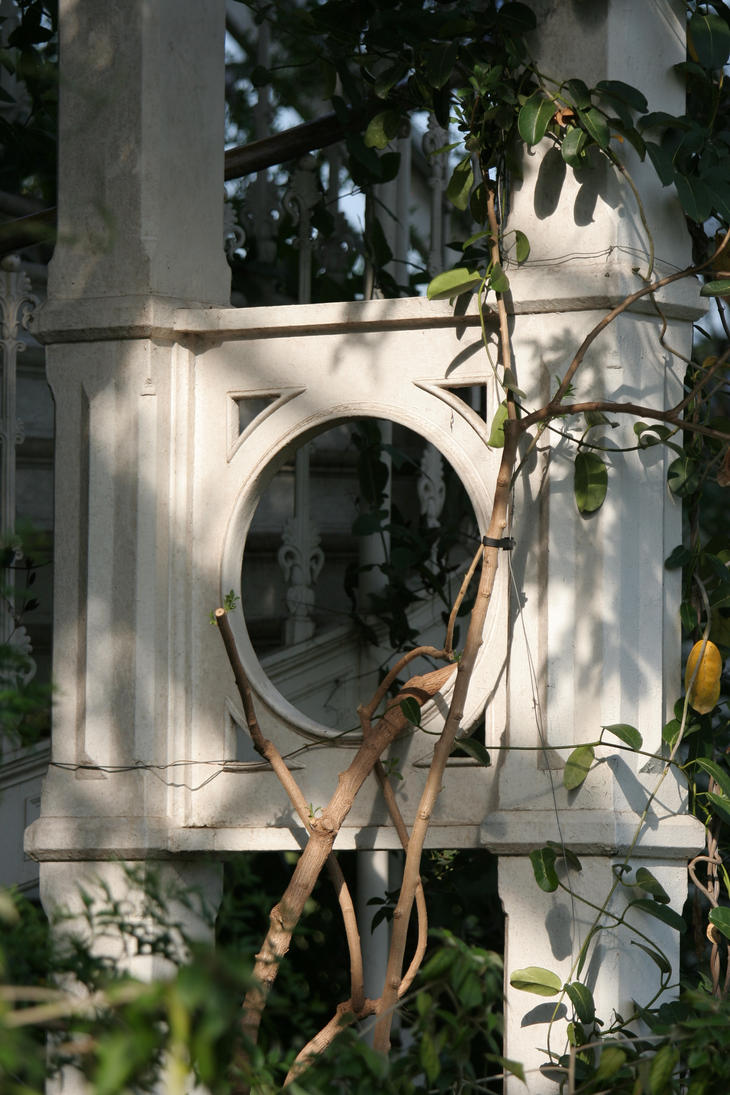 Kew garden stock 10 by Random-Acts-Stock