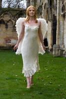 Seraphim Angel 26 by Random-Acts-Stock
