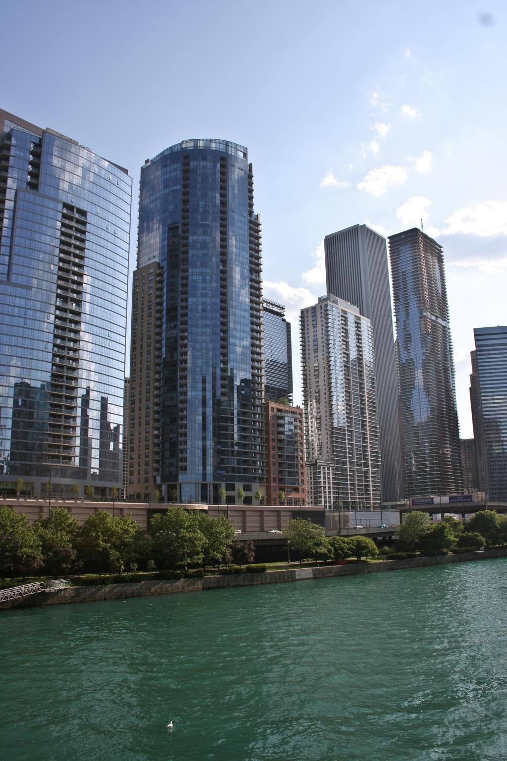 Chicago stock 35
