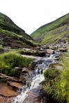 Yorkshire dales stock 14