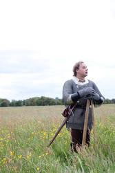 Knights Hospitalier stock 11 by Random-Acts-Stock