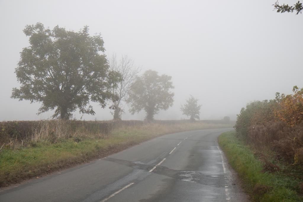 Vale of York 19