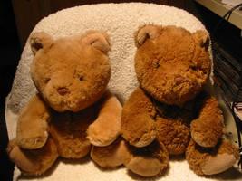 Naughty teddy stock 1