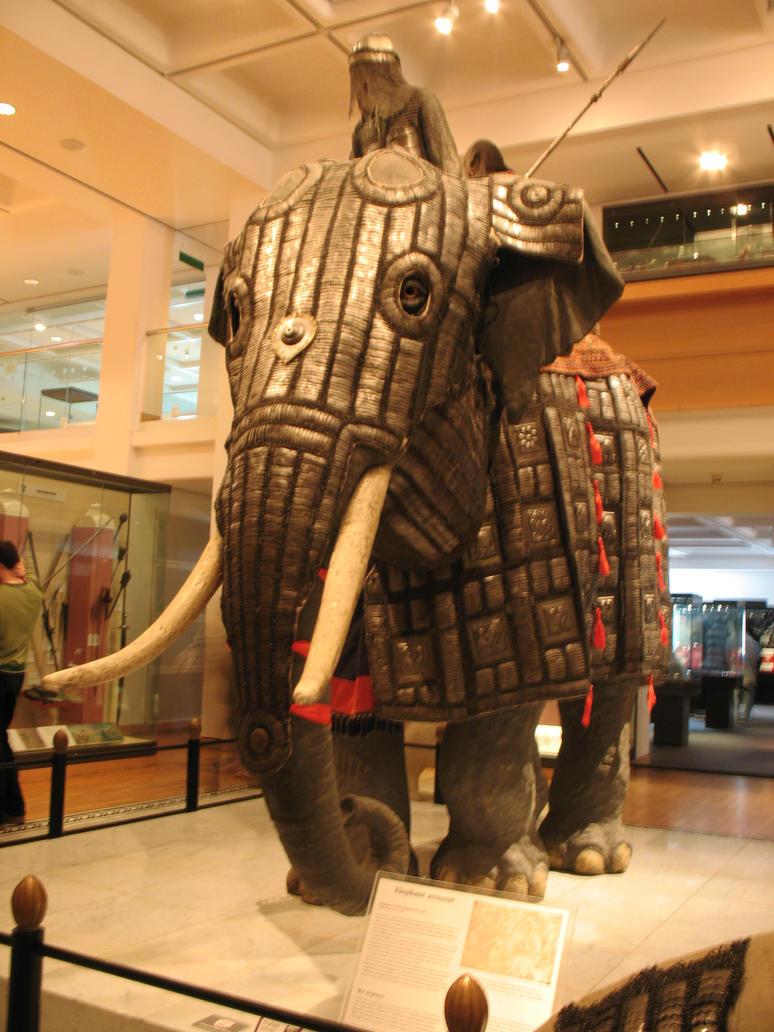 War elephant stock 4 by Random-Acts-Stock