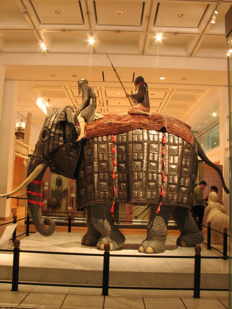 War elephant stock 5 by Random-Acts-Stock