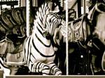 carousal zebra