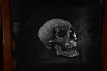 skull scratchboard