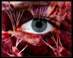Eye of the zombie by evilneil