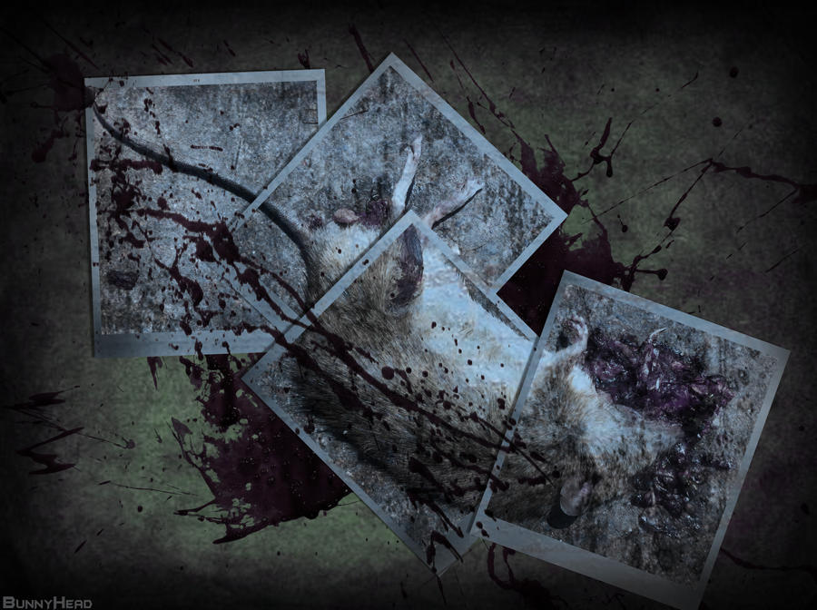 Murder Art... by BUNNYxHEAD