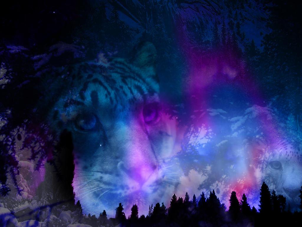 aurora snowfall by heartset