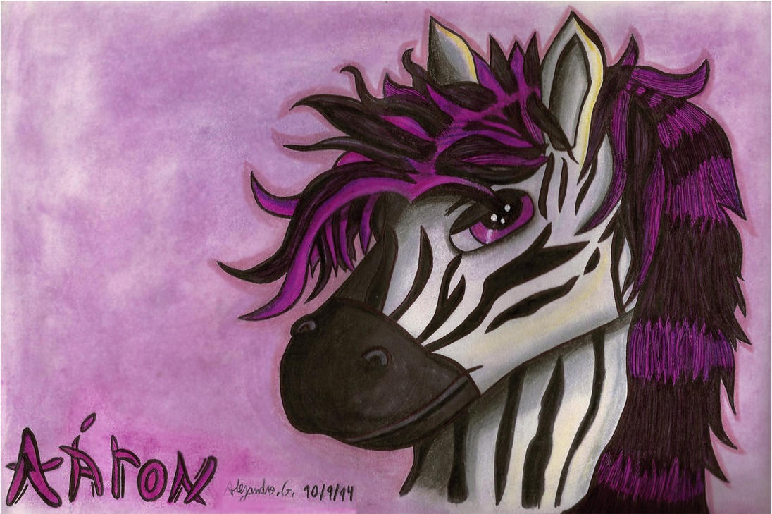 aaron equus (the zebra) by tigrisssilvery