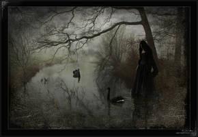 Lament by Nightt-Angell