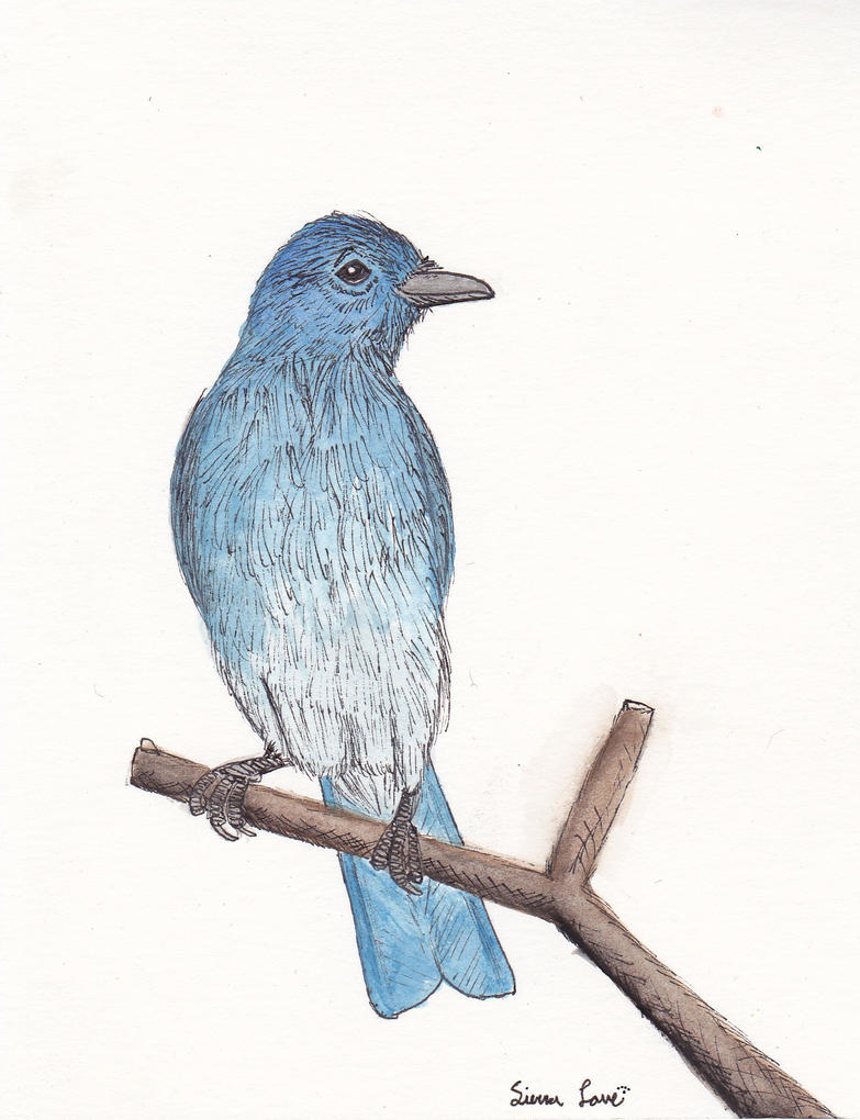 Blue Bird by Snapdragonfly-Ink