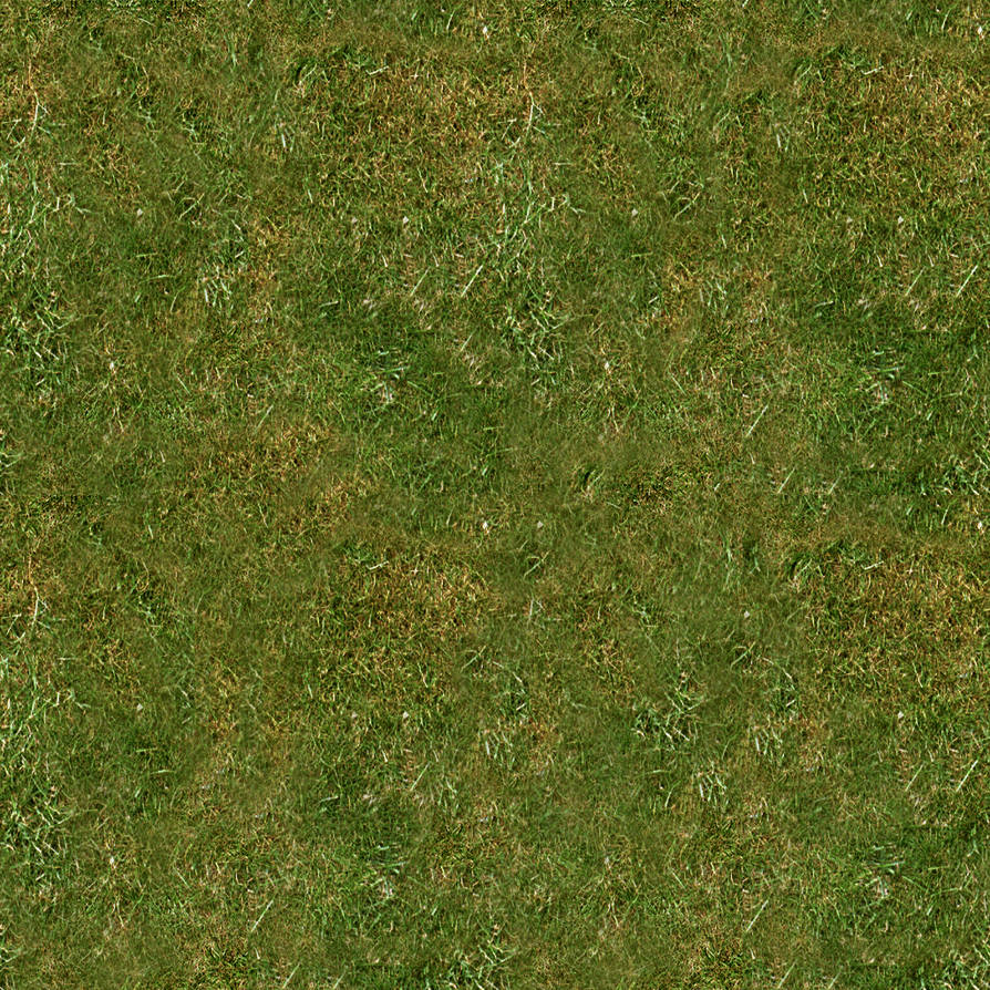 Grassy Texture 01 by CyclicalConundrum
