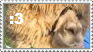 Alpaca Meow Stamp by Aura-BleedingHeart