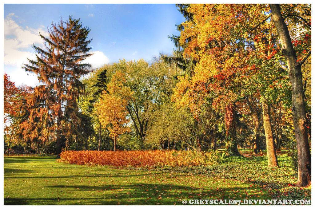 Zelazowa Wola in Autumn 1 by Greyscale87