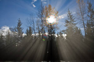Shining Down On Me.. by mark1624