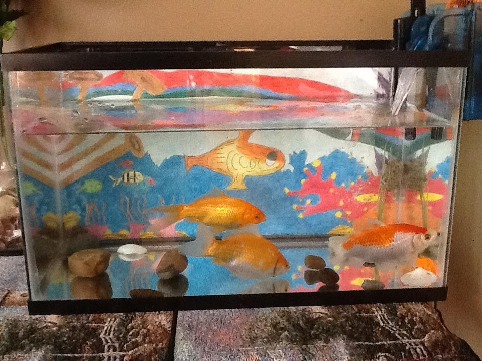 Goldfish by HispanicOrca