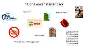 The Alpha male starterpack