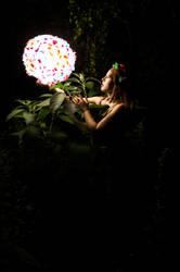 Flower Power by AnneMarks