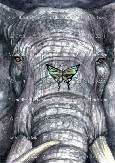 Nature Tarot: Strength By ArdenEllenNixon On DeviantArt