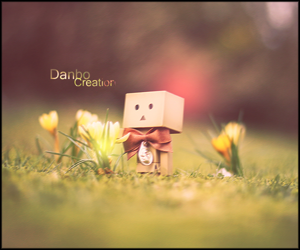 Danbo's Creation 2.0 by Knooda
