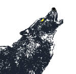 Wolf for a T