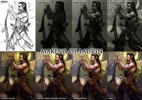 Laurin progress overview