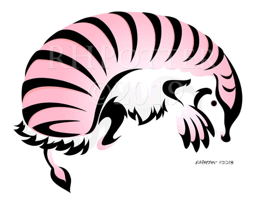 Pink Fairy Armadillo by RHPotter