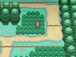 Pokemon BOJE - Route 1 by Thomas-6497