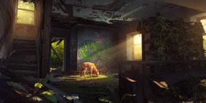 Hide and seek by PavellKiD