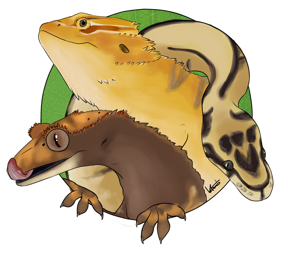 Reptilia logo by Escai