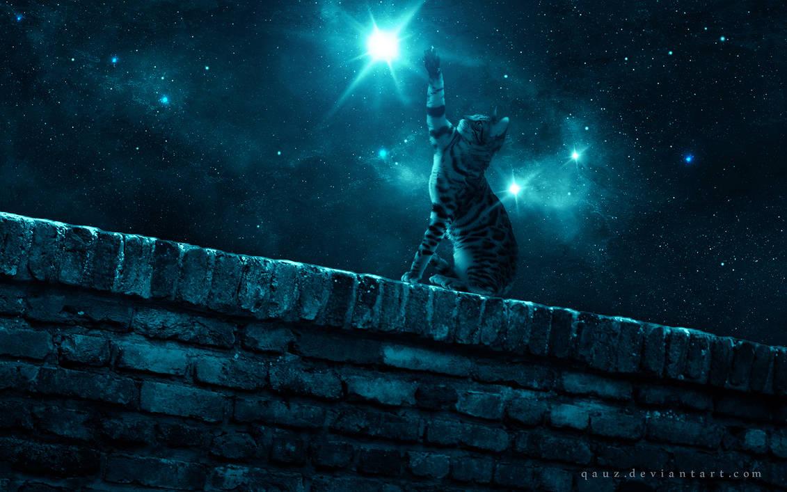The Bigger Star by QAuZ