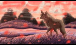 It's my land by Alukei